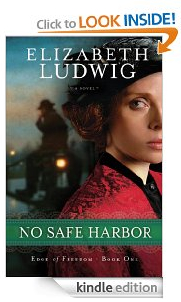 No Safe Harbor Free Kindle Book