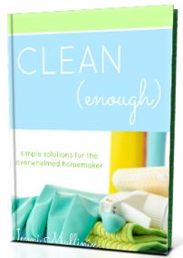 Clean Enough Ebook