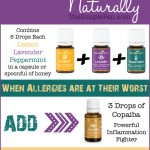 Fight Allergies Naturally with Essential Oils || TheSimplePen.com