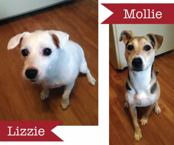 Lizzie-and-Mollie