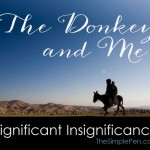 The Donkey and Me: Significant Insignificance || TheSimplePen.com