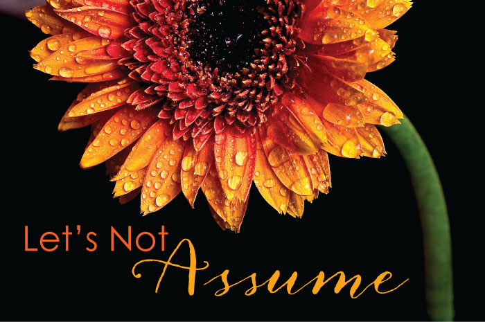 Let's Not Assume || TheSimplePen.com