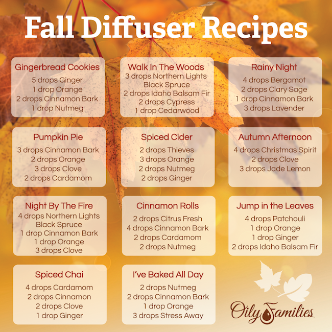fall-diffuser-recipes