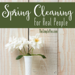 Spring-Cleaning-for-Real-People2
