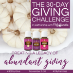 30-Day Giving Challenge 2016